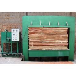 Линия для производства фанеры  300 куб.м. месяц